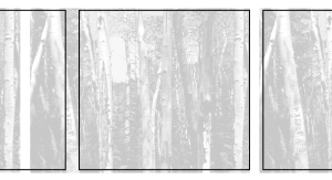 10 Cameron Martin - Trees (Bracket), 2012