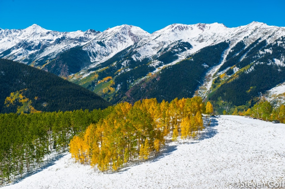 Snow creates a powerful backdrop to fall colors.